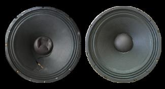 Speaker Reconing Service